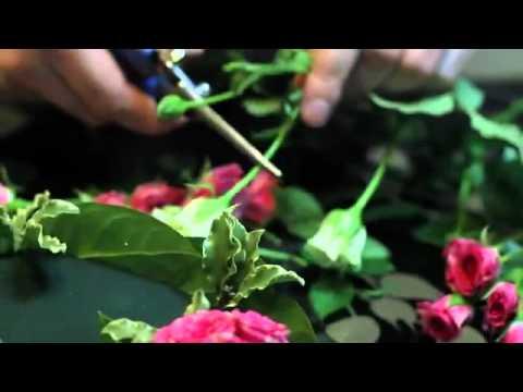 Сердце из роз и клубники, подарок любимой своими руками