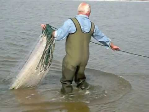 warnet vissen in het zwin