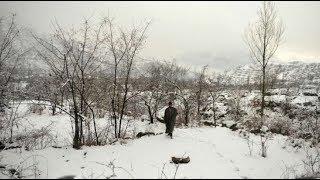 5W1H: J&K, Himachal Pradesh and Uttarakhand get fresh snowfall, temperature dips in north India - ZEENEWS