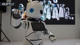 Which one will be your mechanical companion? World Robot Conference 2018 launches in Beijing - RUSSIATODAY