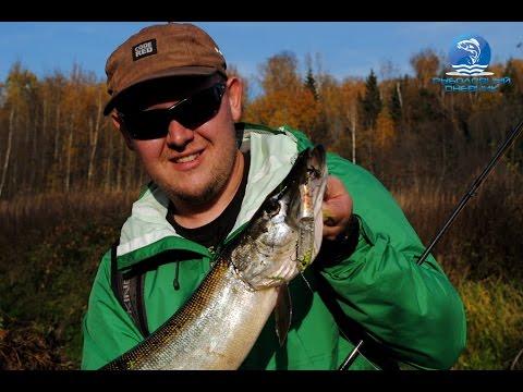 видео уроки по ловле щуки спиннингом