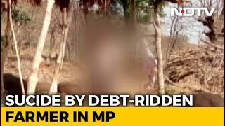 Unable To Repay Rs. 9,000 Loan, Madhya Pradesh Farmer Commits Suicide - NDTV