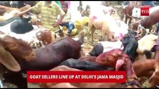 Eid ul-Adha: Jama Masjid vicinity turns chaotic as goat-sellers lined-up their animals - TIMESOFINDIACHANNEL
