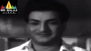 Jeevitha Chakram Movie Naga Bhushanam and NTR Comedy Scene    NTR, Vanisri, Sharada - SRIBALAJIMOVIES