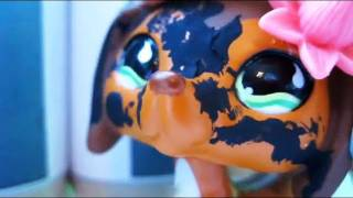 Littlest Pet Shop: Popular (Episode #5: Calories and Competition)