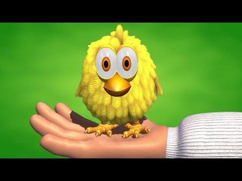 El Pollito Amarillito - Canciones de la Granja 2