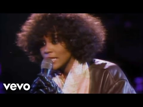 Whitney Houston - Didn't We Almost Have It All