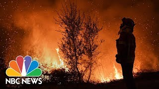 Deadly Wildfires Kill At Least 36 In Portugal | NBC News - NBCNEWS