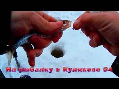 красноборск клев рыбы