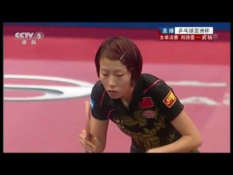 2013 Asian Cup (ws-final) LIU Shiwen - WU Yang [HD] [Full Match/Chinese]