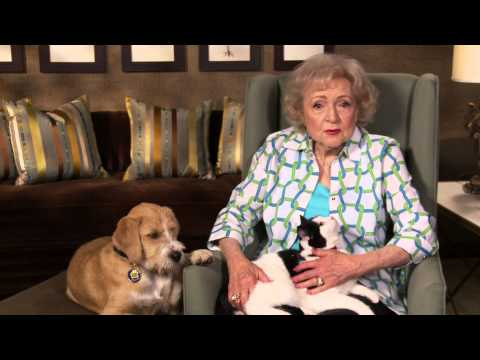 Thumbnail image for 'Protect Your Pets the Betty White Way; HomeAgain Pet Reovery Microchips'