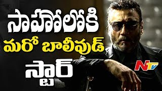 Bollywood Actor Jackie Shroff to Play Key Role in Prabhas #Saahoo Movie || NTV - NTVTELUGUHD