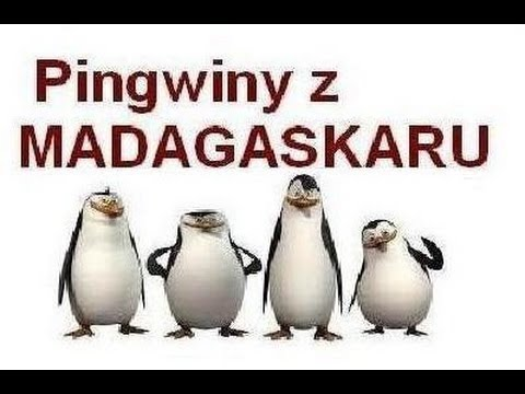 Pingwiny z Madagaskaru - Zbliża się orka