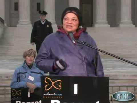 Thumbnail image for 'Reflection and Testimony:  Alveda King Shares Her Abortion Story'
