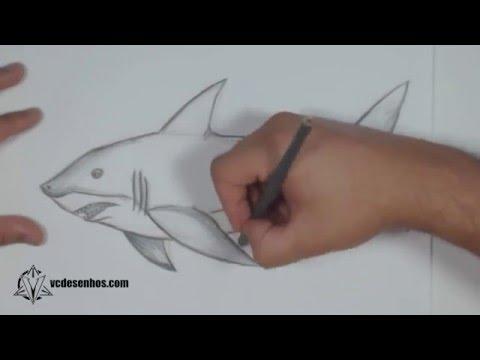 Como desenhar Tubarão Realista