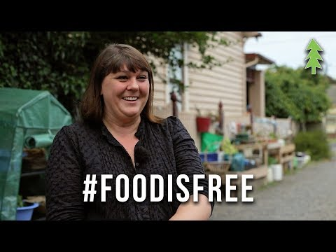 Giving Away Food For Free! - The Food is Free Laneway