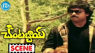 Chantabbai Movie Scenes - Allu Aravind Comedy    Chiranjeevi    Suhasini    Jandhyala - IDREAMMOVIES