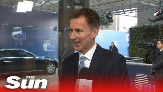 Jeremy Hunt in Brussels: 'there is a way through' - THESUNNEWSPAPER