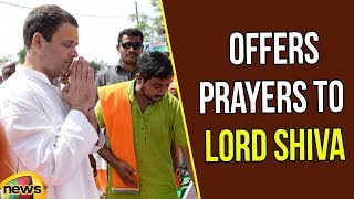 Rahul Gandhi Offers Prayers to Lord Shiva in Amethi | Rahul Gandhi News Updates | Mango News - MANGONEWS