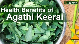 Health Benefits of Agathi Keerai | Unave Marundhu | 20/11/2016 | PuthuYugam TV Show