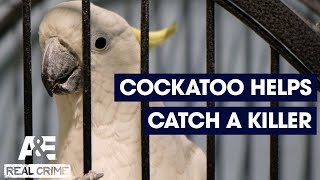 Real Crime: Cockatoo Helps Detectives Solve A Murder | A&E - AETV