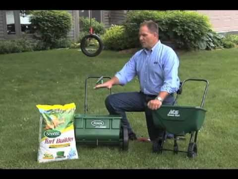 How do I put fertilizer on my lawn?