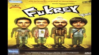In Graphics: Eight days box office collection of Fukrey returns - ABPNEWSTV