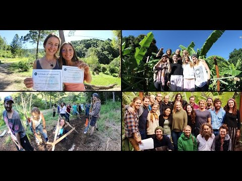 PDC Course - Permaculture Design Course Residential & Online by Noosa Forest Retreat - Trailer