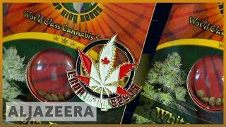 🇨🇦 Canada becomes second country to legalise recreational cannabis | Al Jazeera' - ALJAZEERAENGLISH