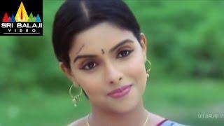 Gharshana Telugu Full Movie   Part 6/13   Venkatesh   Asin   Gautham Menon   Sri Balaji Video - SRIBALAJIMOVIES