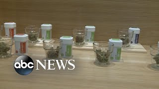 Massachusetts opens first recreational pot stores - ABCNEWS