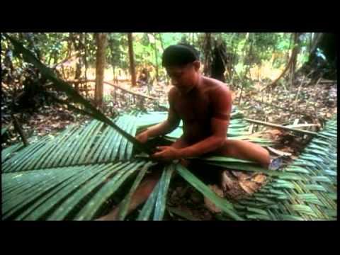 Documentário mostra a vida de Sydney Possuelo e o processo de civilização da Amazônia