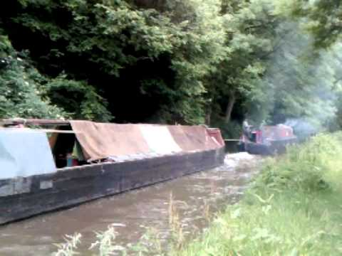 Southam and Lilith on the Macclesfield Canal. June 2011.