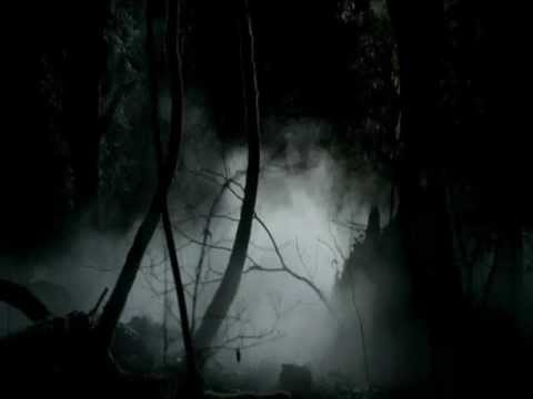 Previously on The Vampire Diaries intro (by Elena, Damon, Stefan, Vicki, Bonnie, Alaric, Jeremy)