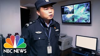 The 19th Guardian Of The Pine: A Famous Chinese Tree And Its Bodyguard | NBC News - NBCNEWS