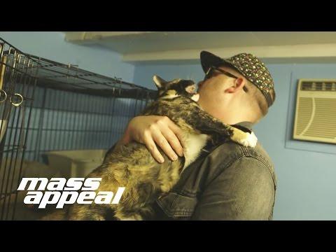 El-P - El-P Attempts To Record Cat Sounds For
