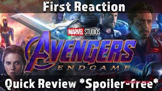 Avengers: Endgame FIRST reaction spoiler free movie REVIEW by Neil Soans - ZOOMDEKHO
