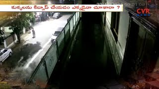 Pet Dog Kidnaped At Seethammadhara in Visakhapatnam | CVR News - CVRNEWSOFFICIAL