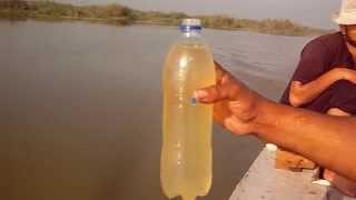مياه بحيرة المنزلة سوداء ضحلة بسبب الصرف الصحي