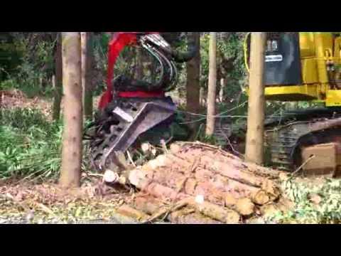 Chico Milota Reflorestamento - Trabalho das Máquinas no Campo