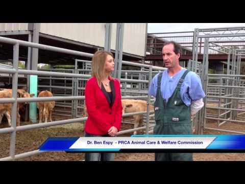 Texan TV News 12-18-14