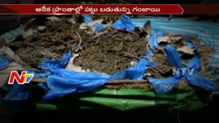 Why Telugu States Becoming Adda for Ganja Supply? || Drugs Case | NTV - NTVTELUGUHD