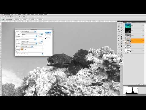 Photoshop CS5: rimuovere forte dominante colore 1 di 2