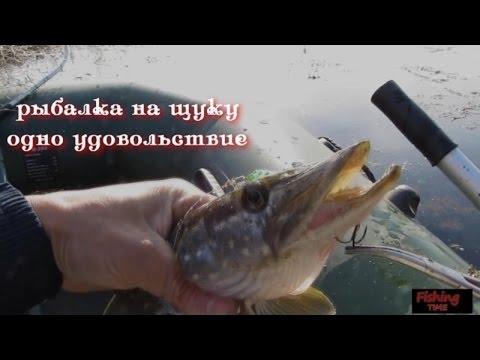особенности рыбалки на щуку