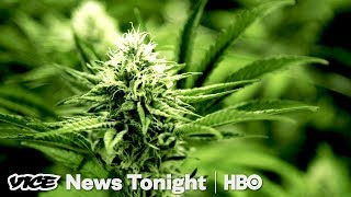 Oregon Weed Market & France Goes Green: VICE News Tonight Full Episode (HBO) - VICENEWS