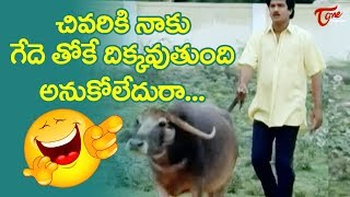 చివరికి ఈ గేదె తోకే దిక్కవుతుంది అనుకోలేదురా..| Telugu Comedy Videos | TeluguOne - TELUGUONE