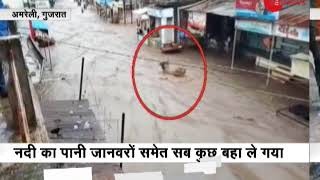 Heavy rains brings flood-like situation in parts of Gujarat - ZEENEWS