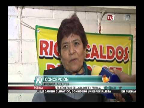TV3 Noticias - Comercio de Ajolote en Puebla