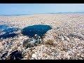 VIDEO: Basura: un problema que impacta en las playas