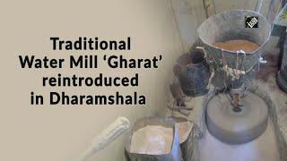 Video - Dharamshala में फिर से शुरू हुई Traditional Water Mill 'घराट'